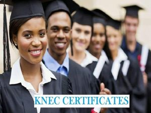 knec certificate courses offered by colleges in kenya